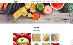 一个成功的济宁网站建设是什么样的-济宁农业行业官网-济宁网站建设