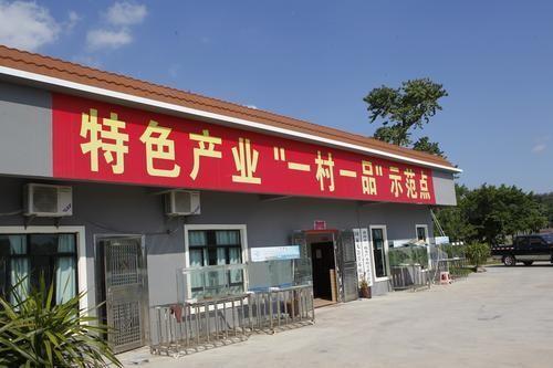 """第九批""""一村一品""""示范村镇名单出炉,济宁3村庄上榜"""